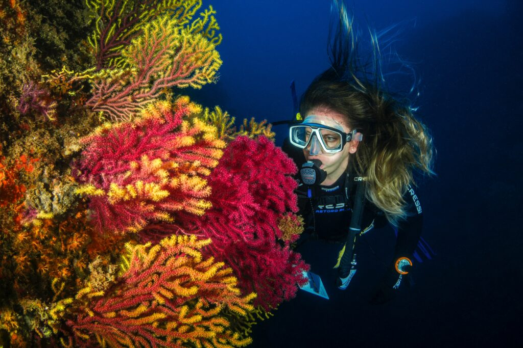 deep sea diving with coral photo by Juanma Clemente-Alloza