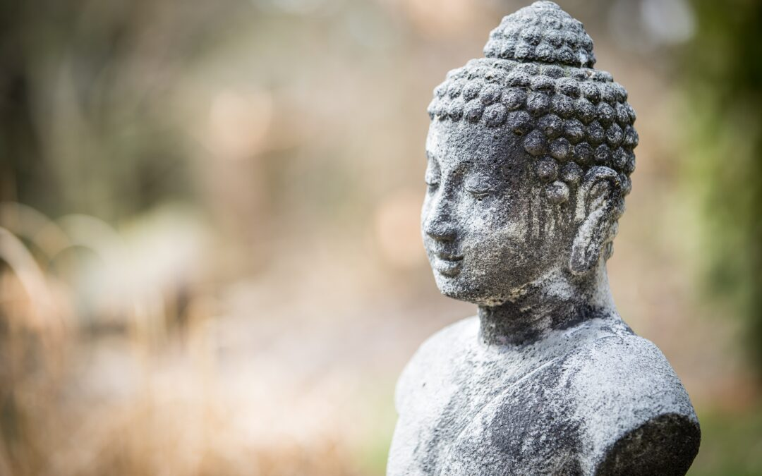 Zen & The Art of Shopping